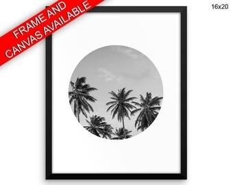 Palm Tree Printed  Poster Palm Tree Framed Palm Tree Photography Art Palm Tree Photography Print Palm Tree Canvas Palm Tree california art