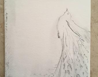 Representational abstract drawing // Graphite // Bird // Dissolving