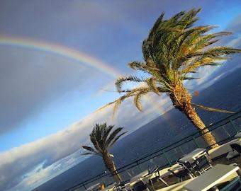 Rainbow with Palmtrees 2010 - Signiert Photo 1-5th copie