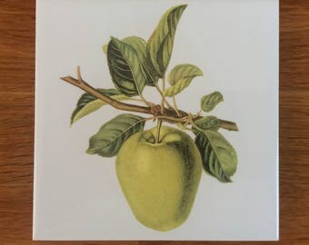 Vintage Style Green Apple Ceramic Wall Tile