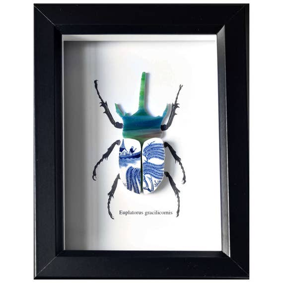 Framed Recycled China Rhino Beetle Taxidermy - Blue Willow