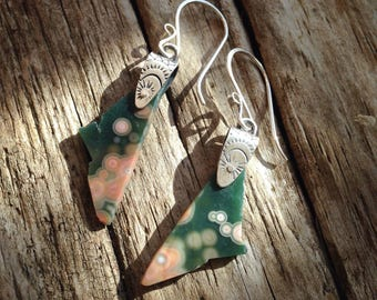 Ocean Jasper and Sterling Dangle Earrings