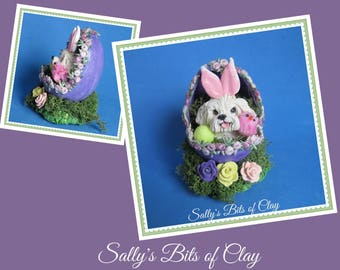 READY to SHIP! One of a Kind Maltese dog Easter Bunny in Egg sculpture by Sally's Bits of Clay