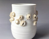 White Barnacle Cup