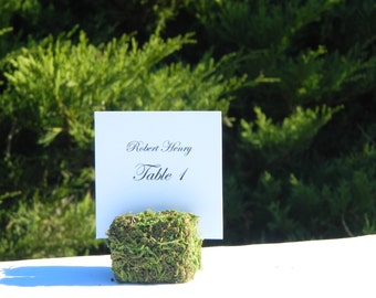 Moss Place Card Holder + Rustic Wedding Moss Cube Table Sign Holders- Set of 11