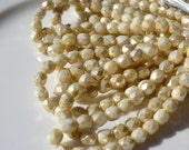 Champagne Pearl Coat 6mm Faceted Round Czech GLass Fire Polish Round Beads 25