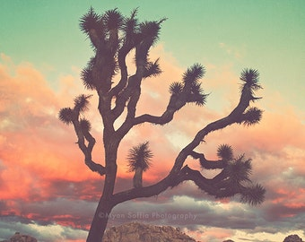 desert nursery print, Joshua Tree sunset photograph, desert photo, girls room decor, boho wall art, California art print, pink, blue art
