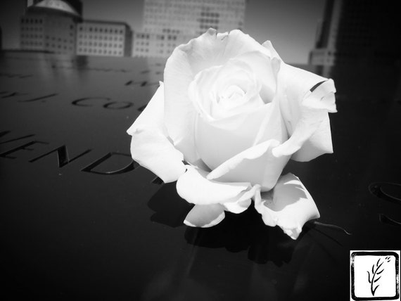 B&W Photograph, wall art, home decor, photo print, fine art, ground zero, 9/11 memorial, world trade center, memorial, white rose, haiku