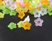 Acrylic Bead 100 Bell Daisy Lily Flower 5-Petal Frosted Spring Easter colors PAIRS 13mm x 7mm (20 each of 5 colors) (1015luc13m8)