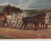 Horse portraits postcard - vintage postcard, A Wagon and a Team of Horses by Marie Rosa Bonheur