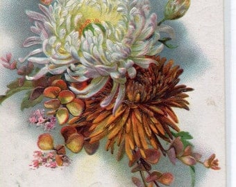 Vintage Postcard  - With Best Easter Wishes  Embossed - Tuck & Sons Floral Easter Greeting No. 129, Chrysanthemum, Bouquet