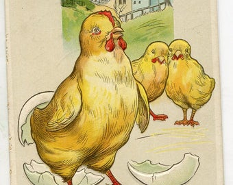 Easter Postcard Chicks egg shells, vintage postcard, SharonFosterVintage