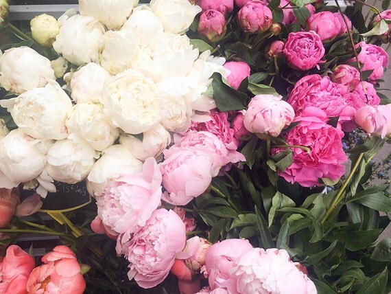 Nature Photograph, Market in Paris, Pink Peonies, Summer in Paris, French Wall Decor, Pink wall art, nature photo, office art, bathroom art