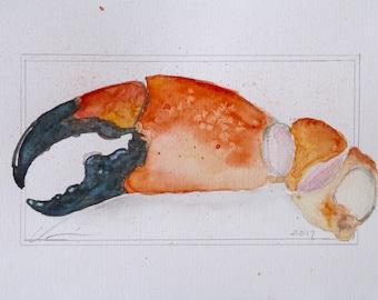 Orange, Yellow, Stone Crab Claw Watercolor by Clair Hartmann Original