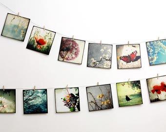 "Nature Postcards SET 01 - TWELVE 5,5""x5,5"" Fine Art Postcards"