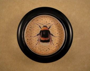 Black and Gold Bee One Round Glass Paperweight Insect Bee Lover