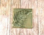 Pottery Fern Ceramic Tile - Home Decor - 992