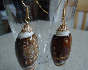 Large Shell Dangle Earrings