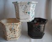 Special Order For CC / Medium Hex Orchid Pot/Planter / Set of 3