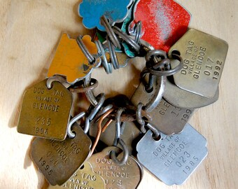 Vintage Dog Tags Instant Collection of Keyring of 16 Color Metal License Tags.