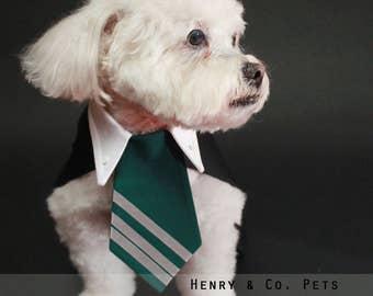 Harry Potter Inspired Dog costume- Slytherin- Draco Malfoy- halloween dog costume- halloween pet