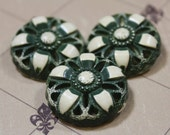 Buffed Celluloid Shank Buttons 3 Green Floral Vintage Celluloid Buttons