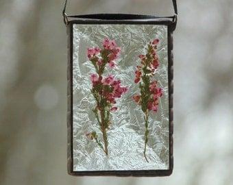 Pink Heather pressed flower suncatcher, flower stained glass suncatcher ornament, real flower pressing, nature garden gift for mom