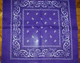 Vintage Bandanna/Handkerchief
