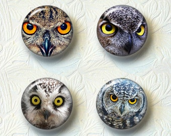 """Owl Magnet Sets, Choose from the 4 Different Prints,  1.5"""" in Size 550M"""