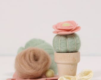 Needle Felting Kit // Desert Rose // Needle Felting Kit, Cactus Craft, Desert DIY Craft Kit, Roving, Felting Kit, Cacti Kits, Benzie Design
