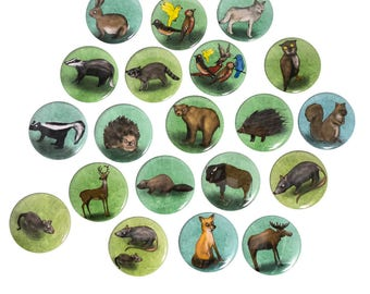 Illustrated Animal Magnet and Pinback Buttons