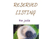 Reserved Listing for Julie