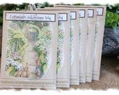 NEW - PETER RABBIT seed packet favors - Cottontail's Wildflower Mix - By the Dozen - Beatrix Potter / Garden-themed party