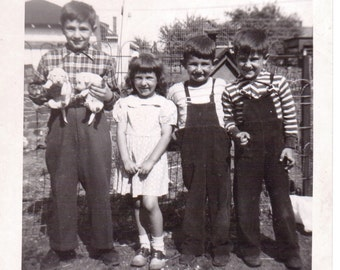 Vintage Photo - Kids with Puppies - Vintage Photograph, Vernacular, Ephemera, Found Photo (C)