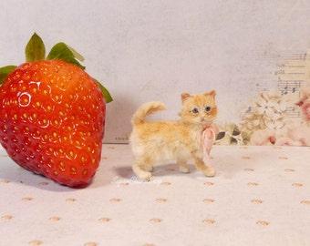 1:12th scale miniature kitten
