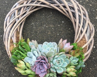 """12"""" Succulent Willow Wreath (made to order)"""