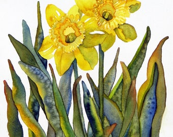 DAFFODIL DUO- Giclee Print of Original  Watercolor Painting
