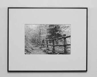 black and white photography, famed photography, framed art, landscape photography, Appalachian Trail, ready to hang