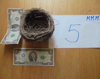 Real bird nest  Northern Missouri Classroom Natural Teaching Aid  Wreath Centerpiece wedding bridal shower decor Photo prop MMM#1