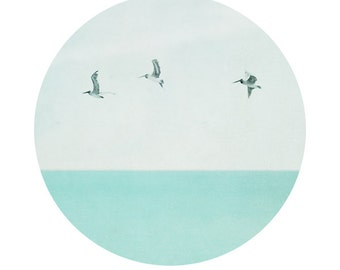 Pelicans Ocean Print, Modern Circular Ocean Photograph, Turquoise Blue Ocean and Pelicans Picture, Lovely Circle beach Print 8x8 and up