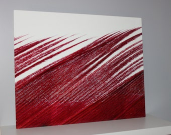 Fine Art Photography Metal Print Close Up Red Feather 16x20