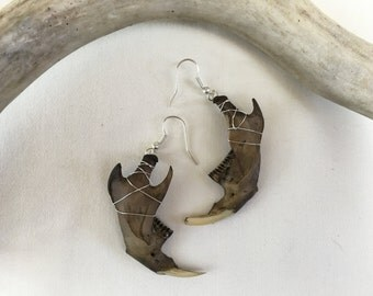 Muskrat Jaw Earrings