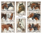 Digital Clipart, instant download, Vintage Horses Images--white bay black, with & without words--Digital Collage Sheet 8.5 by 11 inches 4014