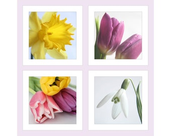 Photo Cards, Pack Flower Greetings Cards, Pack Flower Note Cards, Flower Birthday Cards, Photographic Cards, Spring, Easter