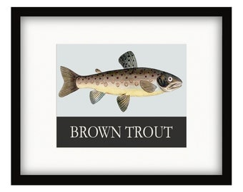 Brown Trout  Vintage Style Poster