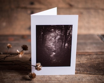 Greeting Card 11 // Sepia, Travel, Trail, Path, Woodland, Through the Woods, Hike, Wander, Explore, Mysterious