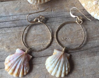 Small Sunrise Shell Hoop Eartings