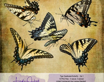 Tiger Swallowtail Butterfly Set 1