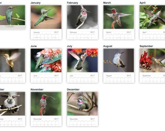 2017 Hummingbird Photo Wall Calendar