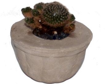Concrete planter, concrete candle holder, air plant holder, eco, succulent planter, cement planter, cactus planter, concrete pot